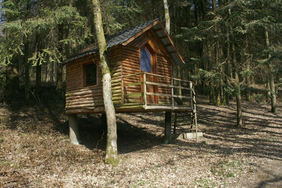 Vakantiehuis chalet in een bos in de ardennen mitauge for Vijver te koop ardennen